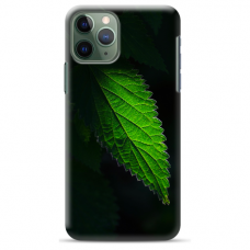 "Iphone 11 Pro max TPU DĖKLAS UNIKALIU DIZAINU 1.0 MM 1.0 mm ""u-case airskin Nature 1 design"""